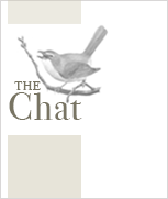 Image of The Chat newsletter