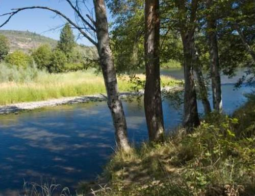 May 23 – Annual picnic at TouVelle State Park