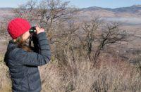 Birdwatching at Sampson Creek Property.