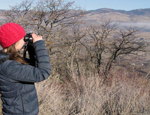 Volunteer for Sampson Creek Preserve bird surveys