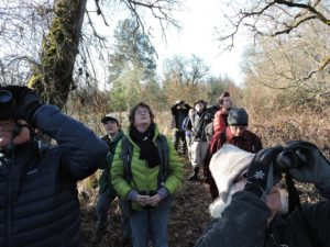 Bird Walk: First Wednesday at Denman Wildlife Area @ Denman Wildlife Area
