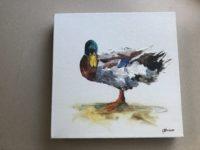 painting of mallard duck