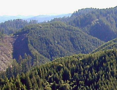 Elliott State Forest endorsements