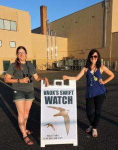 RVAS volunteers monitor swifts.